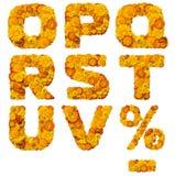 Alphabet des fleurs jaunes et oranges Images libres de droits