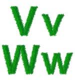 Alphabet des grünen Grases Stockfoto
