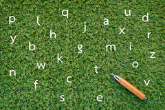 Alphabet drawing on green grass and pencil Royalty Free Stock Photography