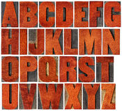 Alphabet eingestellt in Briefbeschwererholzart Stockfotos