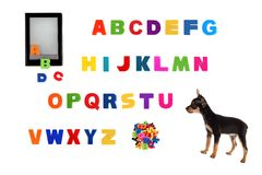 Alphabet, electronic book  and  toy-terrier puppy Stock Photos