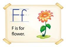Alphabet F Stock Images