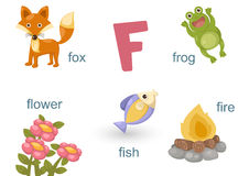 Alphabet F. Illustration of alphabet f set Royalty Free Stock Images