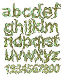 Alphabet and figures, green cartoon Stock Photography