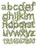 Alphabet and figures, green cartoon. Illustration Stock Photography