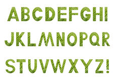 Alphabet with a filling picture from a fern vector illustration
