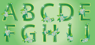 Alphabet. The first part. Alphabet with green floral LETTERS Royalty Free Stock Photo