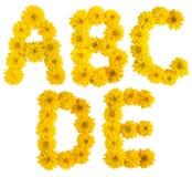 Alphabet floral. a, b, c, d, e Images stock
