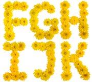 Alphabet floral. f, g, h, I, j, k Photographie stock libre de droits