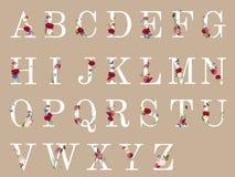 Botanical alphabet with tropical flowers illustration royalty free illustration