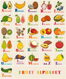 Alphabet & Fruit Vector Set. From A to Z. Illustration. Education for children, preschool, cute, poster. Hand Drawn stock illustration