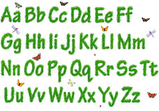 The alphabet from a grass Royalty Free Stock Images