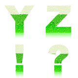Alphabet green beer YZ Stock Images