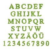 Alphabet with green grass letter Stock Photo