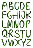 Alphabet from green snakes Royalty Free Stock Photography