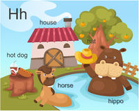 Alphabet.H. Letter hot dog house hat horse hippo vector illustration