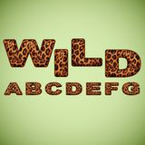 Alphabet imitating leopard fur Stock Photo