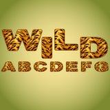 Alphabet imitating tiger fur Royalty Free Stock Image