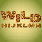 Alphabet imitating tiger fur Royalty Free Stock Images