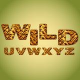 Alphabet imitating tiger fur Stock Images