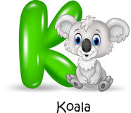 Alphabet K with koala. Illustration of Alphabet K with koala Royalty Free Stock Photo