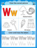 Alphabet learning and color letter W. Alphabet learning letters & coloring graphics printable worksheet for preschool / kindergarten kids. Letter W royalty free illustration