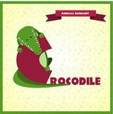 Alphabet letter C and crocodile Royalty Free Stock Image