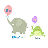 Alphabet Letter E-elephant,F-frog. Illustration  Alphabet Letter E-elephant,F-frog vector Royalty Free Stock Image