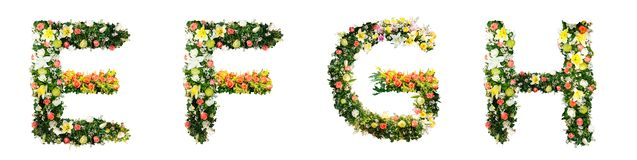 Alphabet letter E F G H made from colorful flowers isolated on w royalty free illustration