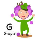 Alphabet Letter G-grape,vector Royalty Free Stock Photo