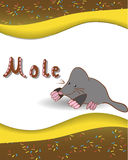 Alphabet letter M and mole. Animal alphabet letter M and rmole with a colored background Stock Photography