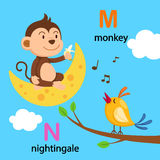 Alphabet Letter M-moon,N-nightingale Stock Images