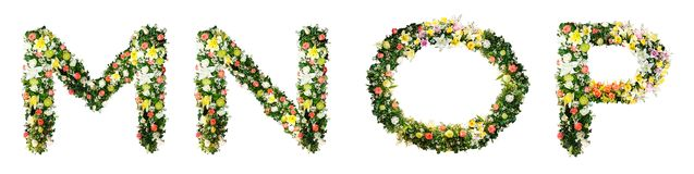 Alphabet letter M N O P made from colorful flowers isolated on w vector illustration