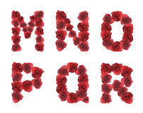 Alphabet letter M N O P Q R made from red rose Stock Images