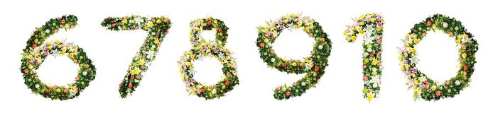Alphabet letter 6 7 8 9 10 made from colorful flowers isolated o stock photos