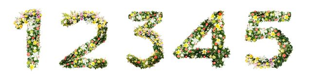 Alphabet letter 1 2 3 4 5 made from colorful flowers isolated on royalty free stock photography