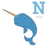 Alphabet letter N narwhal  children vector Stock Image