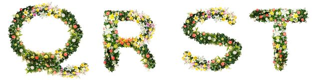 Alphabet letter Q R S T made from colorful flowers isolated on w stock photos