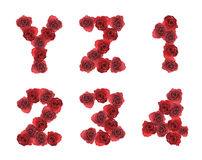 Alphabet letter Y Z 1 2 3 4 made from red rose Stock Photo