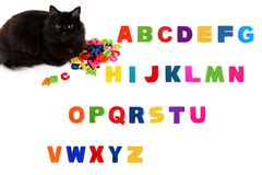 Alphabet letters and black cat on white background. Royalty Free Stock Photos