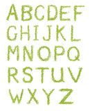 Alphabet letters of green grass isolated on white Royalty Free Stock Images