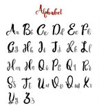 Alphabet   letters lettering calligraphy vector Stock Image