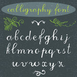 Alphabet letters lowercase, hand drawn calligraphy font. Vector alphabet. Hand written letters of the alphabet and decoration elem Royalty Free Stock Photo