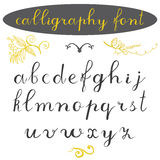 Alphabet letters lowercase, hand drawn calligraphy font. Vector alphabet. Hand written letters of the alphabet and decoration elem royalty free illustration