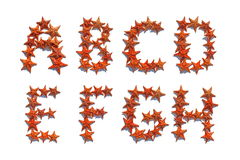 Alphabet letters made of real starfish A to H Royalty Free Stock Photo