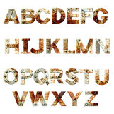 Alphabet - letters from rusty metal with rivets. Isolated on white background Stock Photos