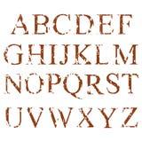 Alphabet Lettres anglaises réglées Image libre de droits