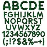 Alphabet, lettres, nombres et signes de tartan vert de tissu Objets d'isolement de vecteur Images libres de droits