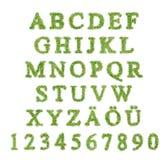Alphabet mit Zeichen des grünen Grases Stockfoto