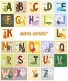 Alphabet, names and animals on colored backgrounds Royalty Free Stock Photo